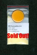 108 Forsythia(tr)  SOLD OUT! - Product Image