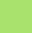 236 Light Green (op) - Product Image