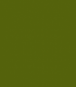 308 Olive Green (op) - Product Image