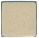 339 Tan Sandalwood (op) - Product Image
