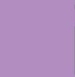 272 Violet (op) - Product Image