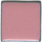 843 Pink Carnation (op)   - Product Image