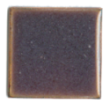 856 Raisin(opal) (TE) - Product Image
