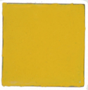 NS-21 Mustard (op) - Product Image