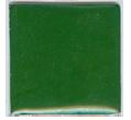 O-116 Fir Grenn (op) - Product Image